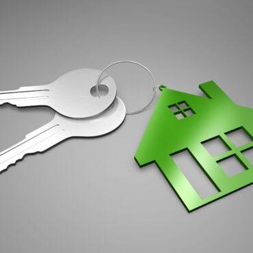 Assistenza immobiliare